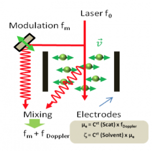wallis_laser-doppler